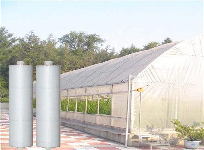 PE Greenhouse Film